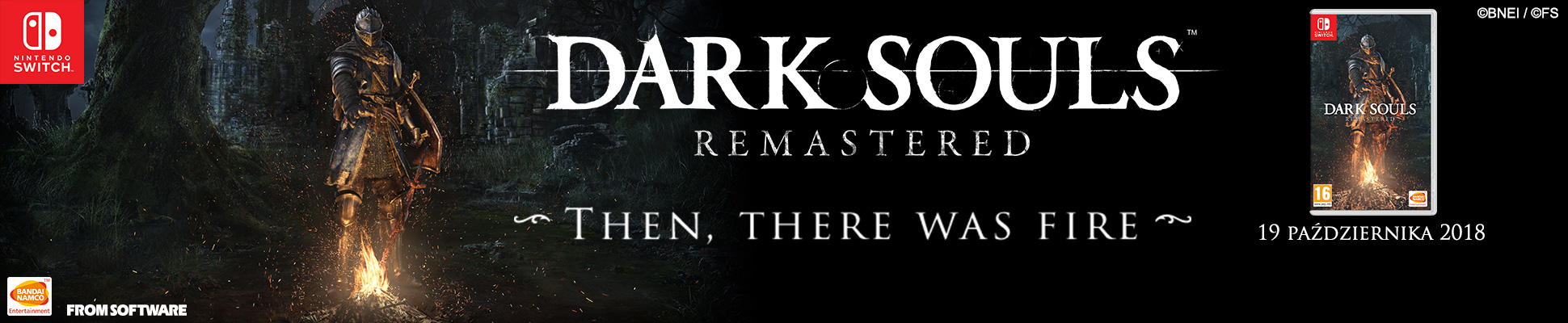 DARK SOULS NS